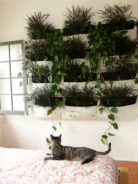 Indoor Woolly Wally Pockets Wall Planters