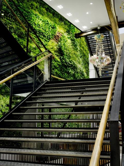 Building Green Walls At Anthroplogy Regent Street London