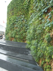 Westfield green wall showing curve