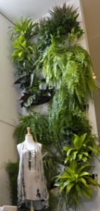 A vertical garden on a tall wall inside