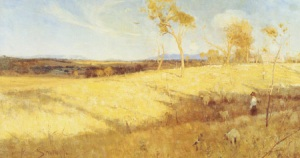 Australian landscape all bleached