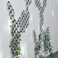 garden trellis with plants