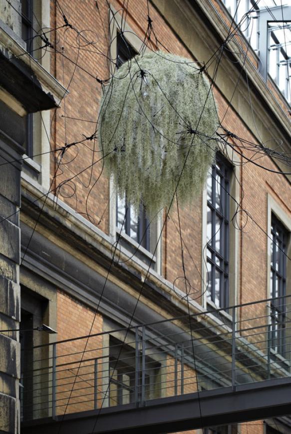 suspended garden art