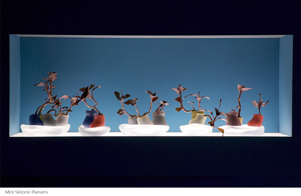paula hayes indoor pots for plants