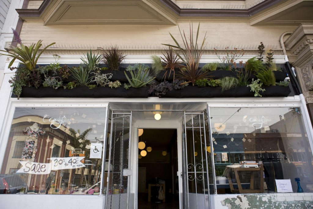 wall planters on shop