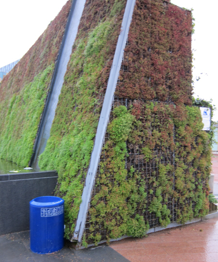 green wall planters