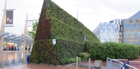 green wall setting in urban area