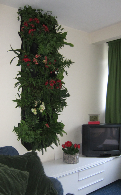 living wall inside