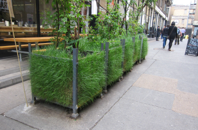 Urban Greening with Recycled Grass Planter Pots at Old Truman ...