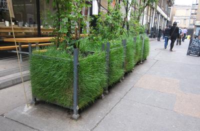 planters for urban garden