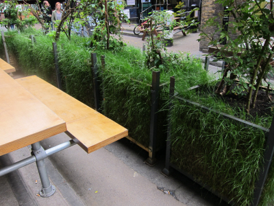 planters with grass