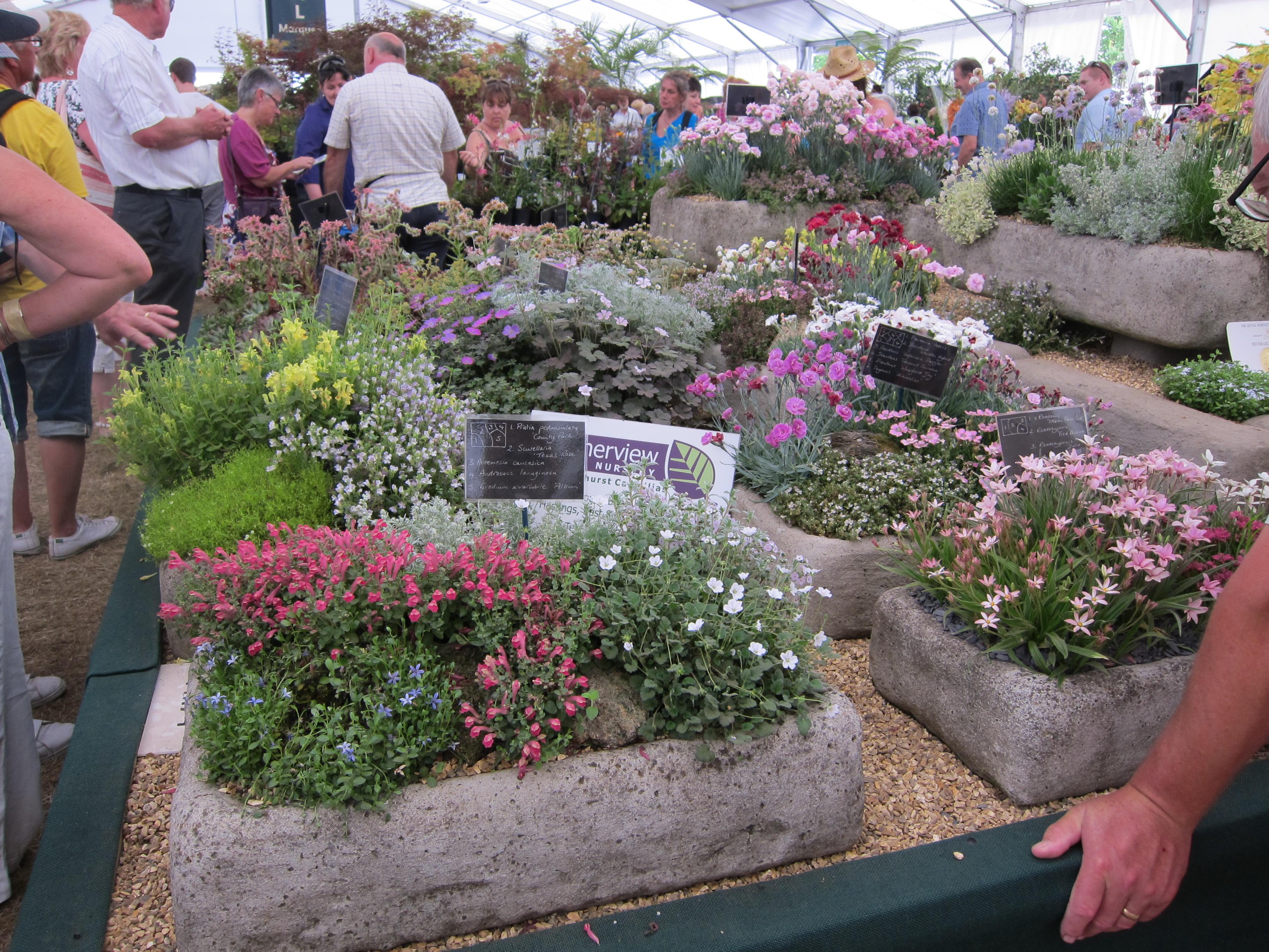 garden accessories planters