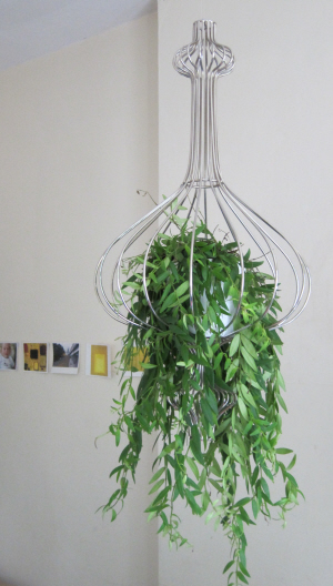 contemporary hanging basket