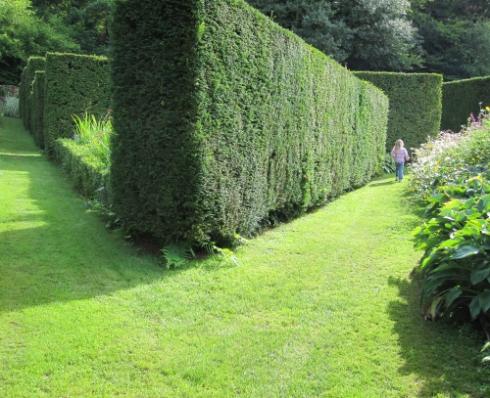 Welsh garden
